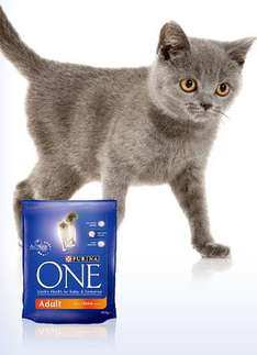 FREE New Purina ONE with Actilea - 50g sample
