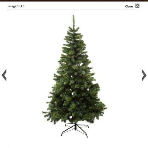 - Sainsburys Christmas Tree Was £50 Now £16.66 - Hotukdeals