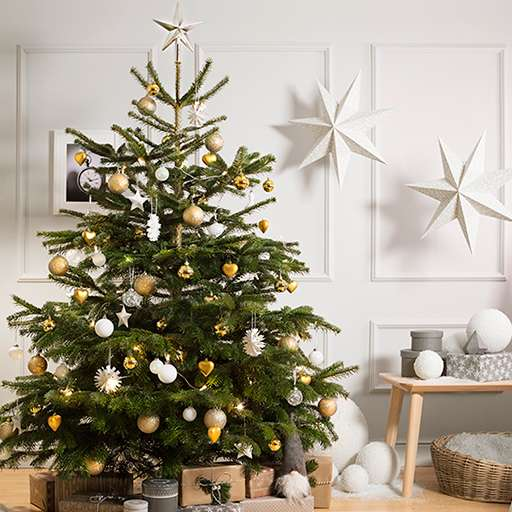 6 ft christmas trees for 25 and get free 20 voucher at ikea