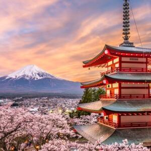 8 Nights in Tokyo (Departing LHR / Jan departure / Including