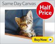 Half price photo onto canvas at tesco 16 x 20 inch £14.99 (same day canvas)