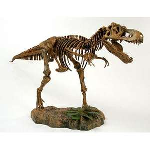Huge saving on a HUGE Tyrannosaurus Rex Skeleton
