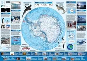 Free Frozen Planet poster