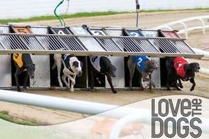 £8 Greyhound Racing Admission For Two With Race Card, Drink and Cheeseburger Each at Love The Dogs (Birmingham- Hall Green or Perry Barr) @ GROUPON
