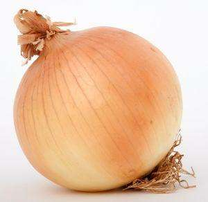 1 KG of Onions for 49p @ ALDI