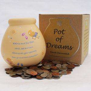 Pot of Dreams money box RRP 6.99 - 99p!!! @ Home Bargains