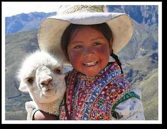 21 days Inca Trail in Peru £849 @ STA Travel