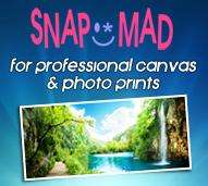 "24"" x 16"" 340gsm Polycotton canvas print only £23.99 delivered @snapmad.com"