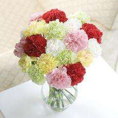 Flying Flowers - 10 Carnations delivered for £8.79