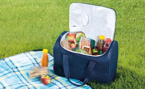 25l cool bag £5.99 @ lidl