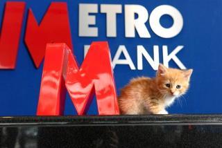 Refund of Battersea re-homing fee for Metro bank Customers