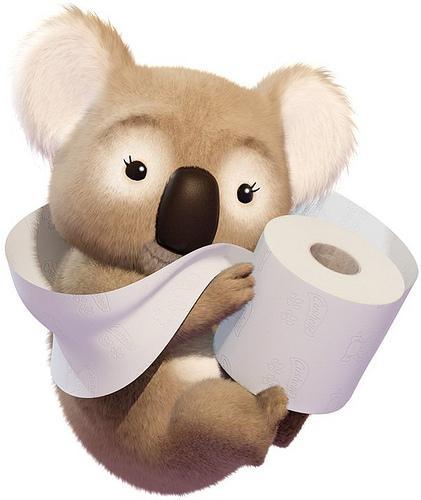 Cushelle toilet roll 18pk £5 at Morrisons