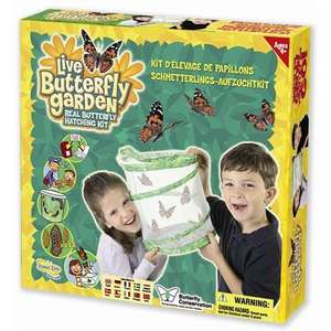Insect Lore: Live Butterfly Garden - Real Butterfly Hatching Kit Only £8.99 @ Play.com