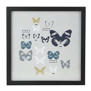 Ashley Thomas / Edition Framed Butterfly Picture was £15 now £4.50 del @ Debenhams (use code SHD1)