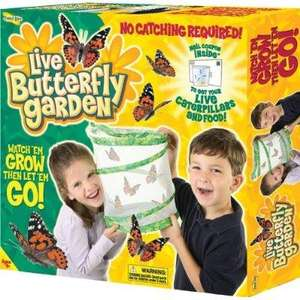 Insect Lore Butterfly Garden £8.88 free delivery From Amazon
