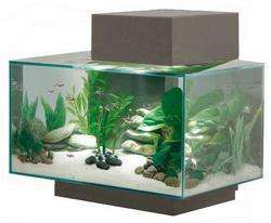 Fluval Edge Aquarium 23 Litre Gloss Pewter with built in filter + Extras  £79.95 Delivered @ Seapets