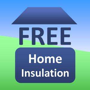 Free loft and cavity wall insulation from E.O.N.