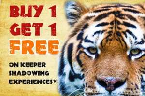 BOGOF Keeper Shadowing Experience @ Colchester Zoo - £50