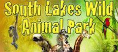 Free Entry For Everyone @ South Lakes Wild Animal Park 5th Nov - 8th Feb 2013