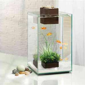 Fluval Chi 25l aquarium £60 Instore @  petsathome