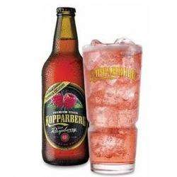 Kopparberg £0.69 per bottle. (PLASTIC bottles, 500ml) - SHIPLEY HOME BARGAINS