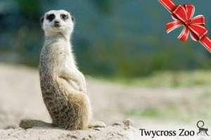 Entry to Twycross Zoo. Up To 51% Off Through Groupon. Adult £6.50 & Children £4.50