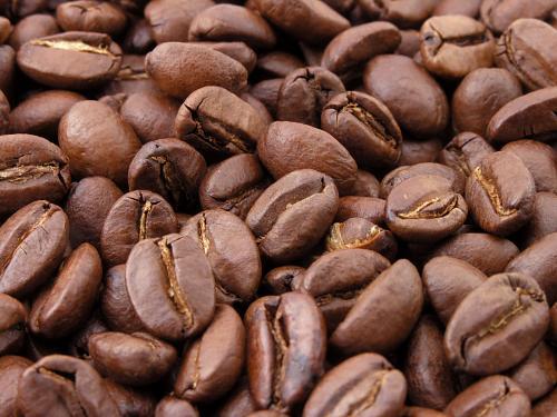 HasBean 25% discount on everything, huge savings on top coffee equipment.