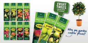 Fruit trees,apples pears cherry`s etc £3.99 @ ALDI