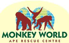 £1 kids entry (bring a blanket) with full paying adult (this half term) @ monkey world dorset