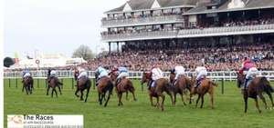 ayr races 2 for 1 ticket offer @ racinguk
