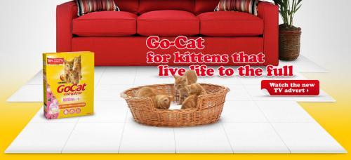 Free Sample of Go Cat's Crunchy & Tender Dry Food