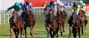 Free race day at ascot on Wednesday 1st may, £3.50 booking fee