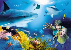 Sainsburys colleagues free entry to sealife centres with payslip