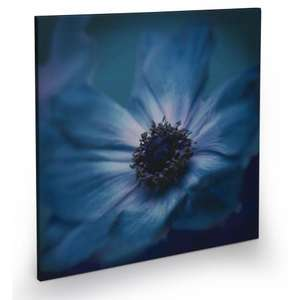 SELECTED WALL ART CANVAS' HALF PRICE OR MORE @ WILKINSON