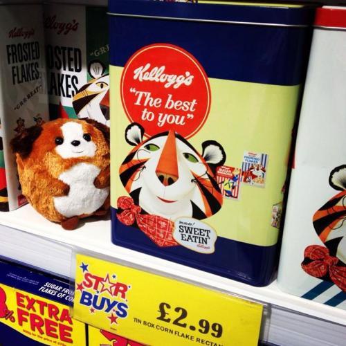 Kellogg's Vintage Cereal Tin, £2.99 at Home Bargains