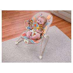 Fisher-Price Baby Bouncer - Tesco Direct £15.52