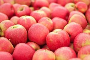 5 Pink Lady apples - £1.49 @ Morrisons