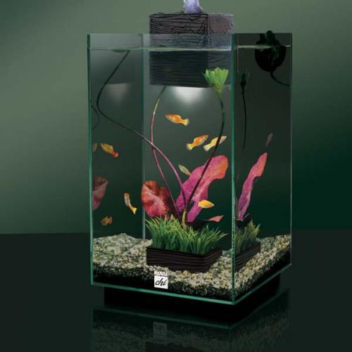 Hagen Fluval Chi Aquarium  19L = £41.99 or 25L = £54.99 Delivered @ PetPlanet