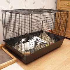 2 Door Indoor Dwarf Rabbit Cage by PetPlanet - Large was £79:99 now £19.99