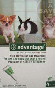 15% off Advantage Flea Treatments until 24th Aug & Free Delivery on all orders £8.58 @ medicanimal