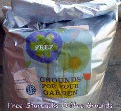 Free Coffee Grounds for your Garden - Starbucks