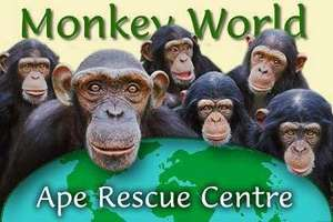 MONKEY WORLD -FREE ENTRY ON HALLOWEEN WHEN DRESSED UP