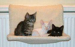 Medium image of cosy cat radiator hammock     4 99   b u0026m