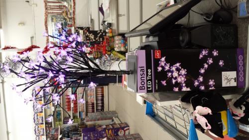 LED Bonsai Tree £14.99 @ Poundstretcher