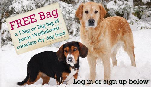 Free sample of dog food @ wellbeloved