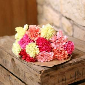 Just Carnations (12 stems) was £16.99 now £8.39 with code & delivered by post @ Flower Fete