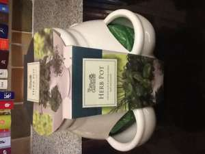 The gifted gardener herb pot with 5 herbs @ Home Bargains £3.99. Lovely chrimbo present