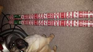 Reindeer wrapping paper 2x 6 metres=12 metres for £1 @ Home Bargains