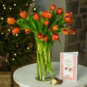 Glistening Tulips Bouquet delivered from 'iflorist' £9.90 with free card &chocolates