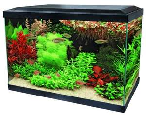 SUPERFISH AQUA EXPERT 70 LITRE AQUARIUM FROM MAIDENHEAD AQUATICS